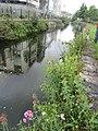 Pretty river, Galway (6048007570).jpg
