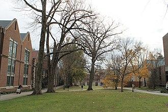 Princeton University School of Architecture - Image: Princeton (8270068391)