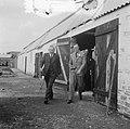Prins Bernhard bezoekt Zeeuws-Vlaanderen (Kruiningen), Bestanddeelnr 905-3632.jpg