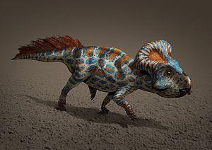 Protoceratops - Restoration of P. andrewsi