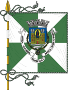 Flag of postage