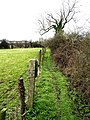 Public footpath west of Preston - geograph.org.uk - 720873.jpg
