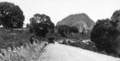 Queensland State Archives 253 Skyring Creek Road Pomona looking towards Mount Cooroora c 1931.png