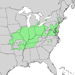 Quercus palustris range map 1.png