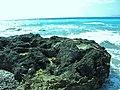 RHODOS - panoramio (2).jpg