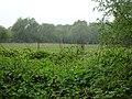 RNR prés des Nonnettes sous la pluie (3).jpg