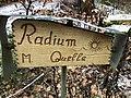 Radiumquelle (Klingenthal) 03.jpg