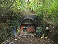 Railway tunnel - geograph.org.uk - 275455.jpg