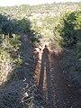 Ramat-ha-Nadiv-manor-trail-836.jpg