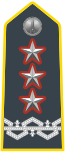 Rank insignia of generale di corpo d'armata comandante in seconda of the Guardia di Finanza.svg