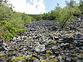 Reserva Natural Integral de Muniellos (Asturias, España) 13.JPG