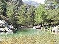 Restonica rockpool - panoramio (2).jpg