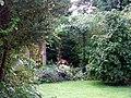 Reynard in suburbia - geograph.org.uk - 471738.jpg
