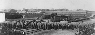 Ringling Brothers Circus - Ringling Brothers trains and elephants