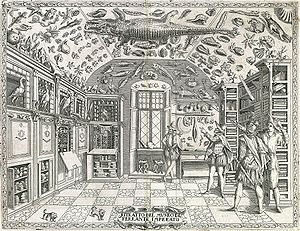 Cabinet of curiosities - Fold-out engraving from Ferrante Imperato's Dell'Historia Naturale (Naples 1599), the earliest illustration of a natural history cabinet