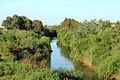 River Majerda.JPG