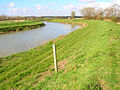River Rother - geograph.org.uk - 388698.jpg