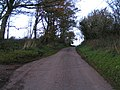 Road to Butterleigh and Tiverton - geograph.org.uk - 1573333.jpg