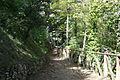 Rocca di Arquta del Tronto - un sentiero del parco.JPG
