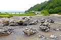 Rocks - Mount Osore - Mutsu, Aomori - DSC00574.jpg