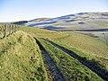 Rolling Border countryside - geograph.org.uk - 298242.jpg