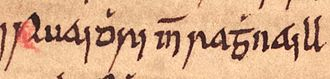 Ruaidhrí mac Raghnaill - Ruaidhrí's name as it appears on folio 63r of Oxford Bodleian Library Rawlinson B 489 (the Annals of Ulster).