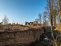 Ruine-Rauheneck-270216-2278323.jpg
