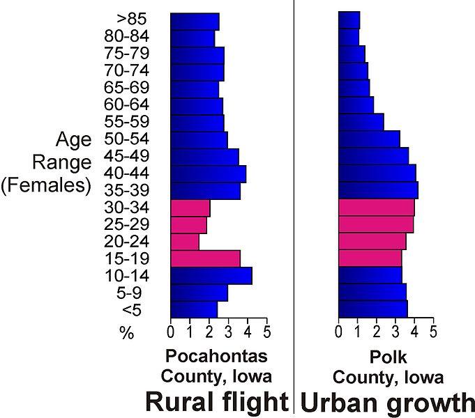 File:Rural flight2.jpg