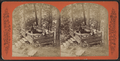 Rustic seat near Dairy Cottage, from Robert N. Dennis collection of stereoscopic views.png