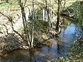Rzeka Rakownik.jpg