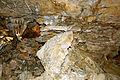 Sépulture datant du néollithique.jpg