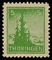 SBZ Thüringen 1945 94 Tannen.jpg