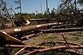 SR Storm Damage (5629620932).jpg