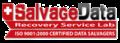SalvageData site logo.png