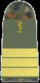 SanM 271-Oberstabsapotheker.png