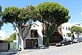 San Francisco - panoramio (163).jpg