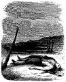 Sand - Œuvres illustrées de George Sand, 1854 (page 53 crop).jpg