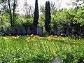 Sarmellek. Foto by Victor Belousov - panoramio.jpg