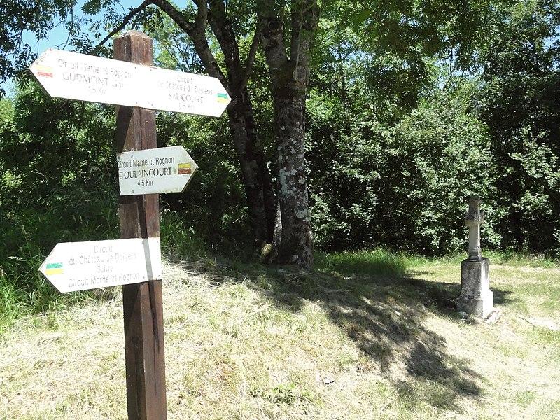 Saucourt-sur-Rognon, chemins de randonnée