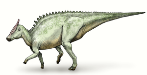 1912 in paleontology - Saurolophus