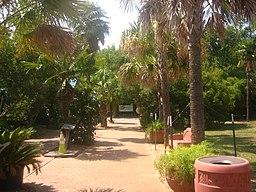 Scene at Alexandria (LA) Zoo Picture 299