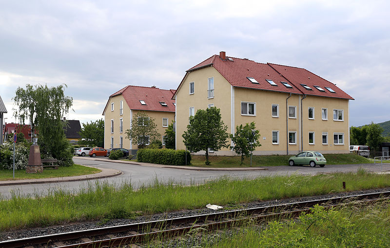Datei:Schurzfell in Salza (Nordhausen) - Juni 2015.JPG