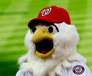 Screech (mascot) - Screech in 2012