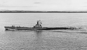 Sea Dog (SS-401).jpg