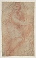 Seated Goddess Diana (recto); Studies of a Nude Male Torso Seen from the Rear, and a leg (verso) MET DP810967.jpg