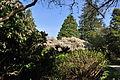 Seattle - Parsons Gardens 27.jpg
