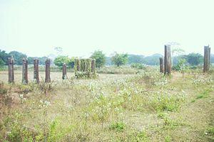 Tosali - Eighteen stone pillars discovered during the excavations at Shishupalgarh