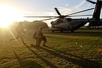 Sikorsky CH-53 Sea Stallion Marines non-combatant evacuation training BQ183.jpg