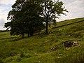 Site of Foe Edge Farm - geograph.org.uk - 474563.jpg