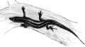 Skink (PSF).png